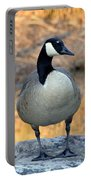 Wild Canadian Goose Portable Battery Charger