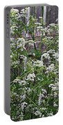 Wild Caraway And Old Fence Portable Battery Charger