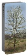 Wild Cherry Tree In Spring Bloom Portable Battery Charger