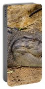 Wild Croc #2 Portable Battery Charger
