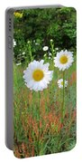 Wild Daisies Portable Battery Charger