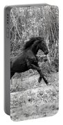 Wild Portable Battery Charger