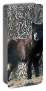 Wild Eyes  Portable Battery Charger