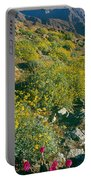 Wild Flowers, Anza Borrego Desert State Portable Battery Charger