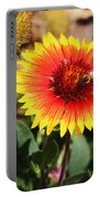 Wild Flowers Sierra Ancha Mountains Portable Battery Charger