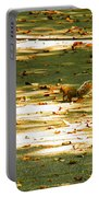 Wild Gray Squirrel Portable Battery Charger