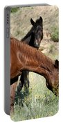 Wild Horse Mama And Her Baby Portable Battery Charger