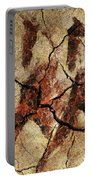 Wild Horses - Cave Art Portable Battery Charger