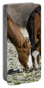 Wild Horses Grazing  Portable Battery Charger