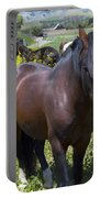 Wild Horses In California Series 4 Portable Battery Charger