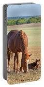 Wild Horses Mother And Baby Portable Battery Charger