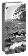 Wild Horses Of Assateague Feeding Portable Battery Charger by Dan Friend