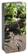 Wild Iguana Finding Shade 2 Portable Battery Charger