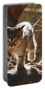 Wild Kitten Happy To Be Alive Portable Battery Charger