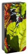 Wild Lettuce Portable Battery Charger