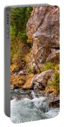 Wild Mountain River Portable Battery Charger