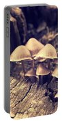 Wild Mushrooms Portable Battery Charger by Amanda Elwell
