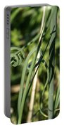Wild Onion Grasp Portable Battery Charger