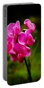 Wild Pea Flower Portable Battery Charger by Robert Bales
