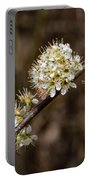 Wild Pear Portable Battery Charger