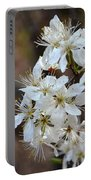 Wild Plum Blooms Portable Battery Charger