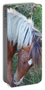 Wild Ponies Of Assateague 21 Portable Battery Charger