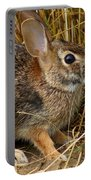 Wild Rabbit Portable Battery Charger