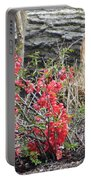 Wild Roses In Wood Portable Battery Charger
