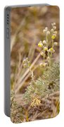 Wild Sage Wormwood Artemisia Figida Yellow Flower Portable Battery Charger