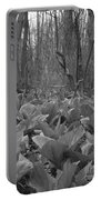 Wild Skunk Cabbage Bw Portable Battery Charger