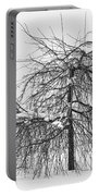 Wild Springtime Winter Tree Black And White Portable Battery Charger by James BO  Insogna