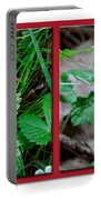 Wild Strawberry Plant - Fragaria Virginiana Portable Battery Charger