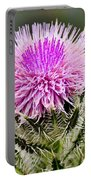 Wild Thistle  Portable Battery Charger
