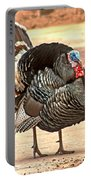 Wild Tom Turkey Portable Battery Charger by Robert Bales