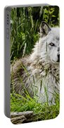 Wild Wolf Portable Battery Charger