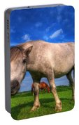 Wild Young Horse On The Field Portable Battery Charger