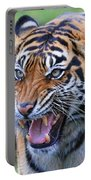 Wildcat IIi Portable Battery Charger