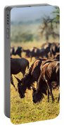 Wildebeests Herd. Gnu On African Savanna Portable Battery Charger