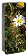 Wildflower @ Kit Carson Portable Battery Charger