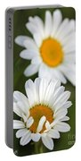 Wildflower Named Oxeye Daisy Portable Battery Charger