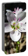 Wildflower Sun Worship Portable Battery Charger