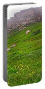 Wildflowers And Mountainous Bluffs At Point Amour In Labrador Portable Battery Charger