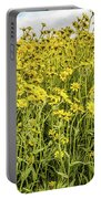 Wildflowers In A Field, Carrizo Plain Portable Battery Charger