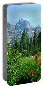 1m9372-v-wildflowers In Cascade Canyon, Tetons Portable Battery Charger