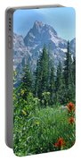 1m9371-h-wildflowers In Cascade Canyon, Tetons Portable Battery Charger