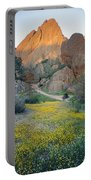 1b6430 Wildflowers In Pinnacles National Park Portable Battery Charger
