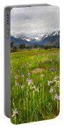 Wildflowers In Rocky Mountain National Park Portable Battery Charger