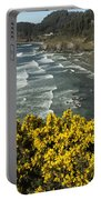 Wildflowers On An Atypical Winter's Day On The Oregon Coast Portable Battery Charger