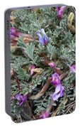 Wildflowers - Woolly-pod Locoweed Portable Battery Charger