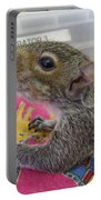 Wildlife Rehabilitation Portable Battery Charger